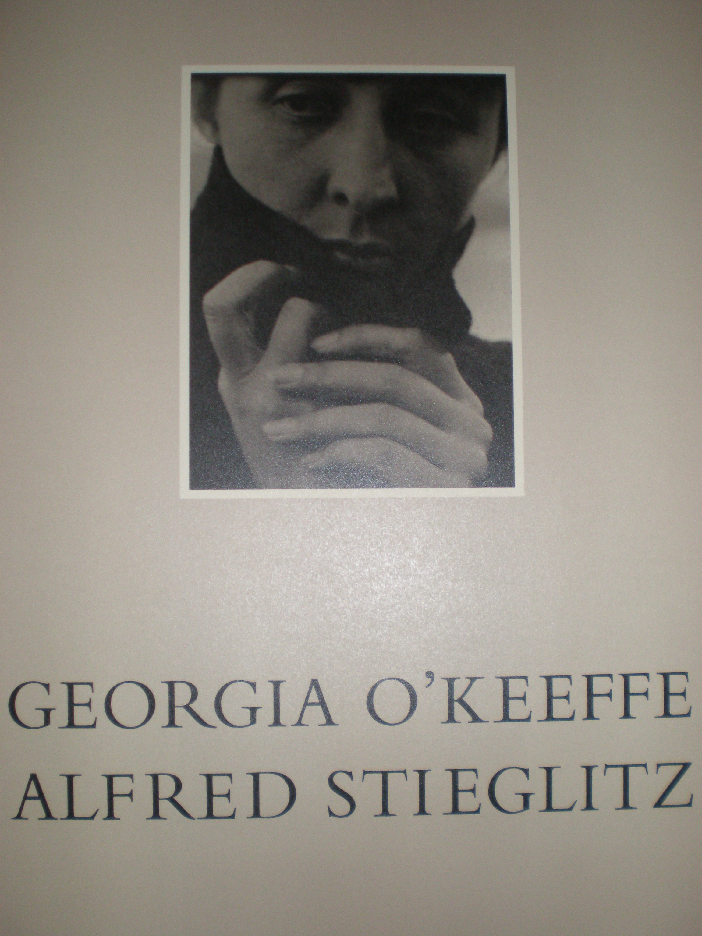 the picturesque life and works of alfred stieglitz From phillips, alfred stieglitz, selected images (1894-1910), nine photogravures from camera work and picturesque bits of new york and other studies.