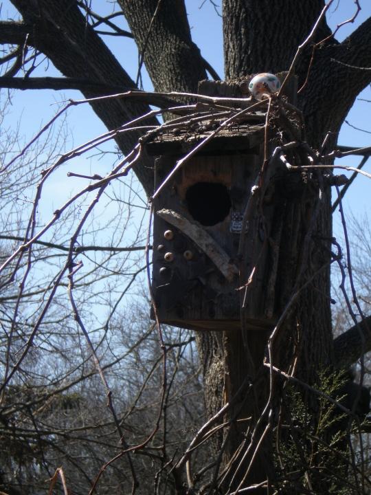 Remodeled bird house...