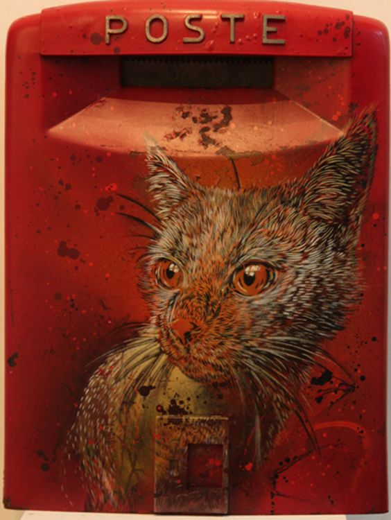Cat by C215